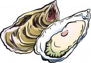 牡蠣(カキ)のイラスト